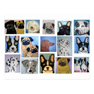 dogs by eric ginsburg postcard