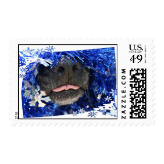 Dog's Christmas Opinion Tongue Out (barely) Postage Stamp