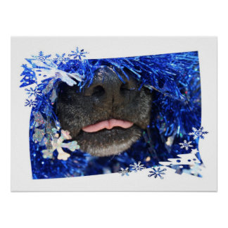 Dog's Christmas Opinion Tongue Out (barely) Poster
