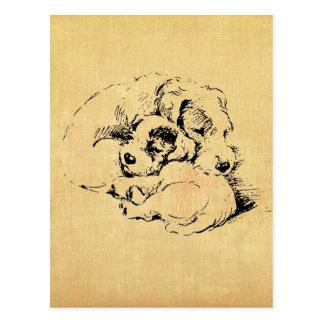 Dogs Cuddly Pets, Beige Orange Texture Look Postcard