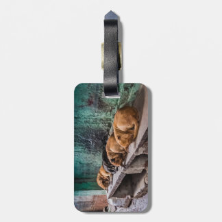 Dogs curling luggage tag w/ leather strap
