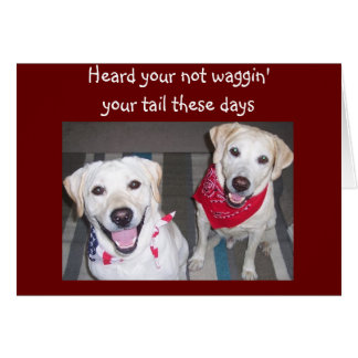 DOGS ENCOURAGES GETTING WELL CARD