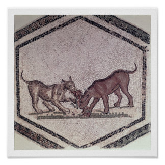 Dogs Fighting for a Bird, Roman, 2nd-3rd century ( Poster
