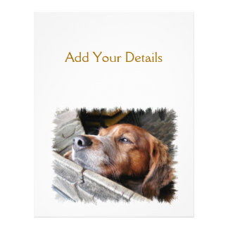 DOGS PERSONALIZED FLYER