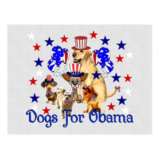 DOGS FOR OBAMA POST CARDS