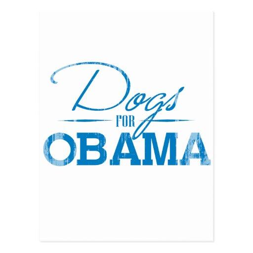 Dogs for Obama Vintage.png Post Card
