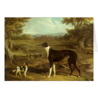 Dogs, Greyhound and Spaniel, Doctor Fop by Herring Card