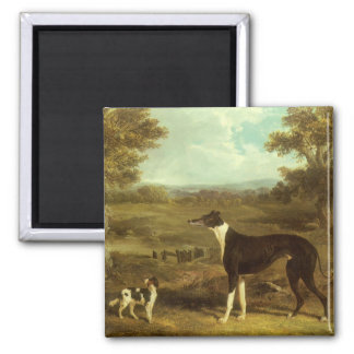 Dogs, Greyhound and Spaniel; Doctor Fop by Herring Refrigerator Magnets