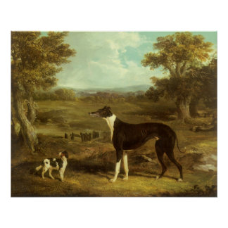 Dogs, Greyhound and Spaniel, Doctor Fop by Herring Poster