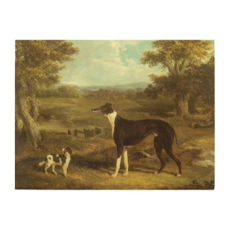 Dogs, Greyhound and Spaniel, Doctor Fop by Herring Wood Wall Decor