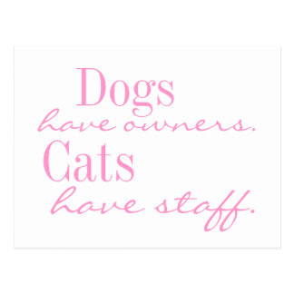 Dogs have owners. Cats have Staff. Postcard
