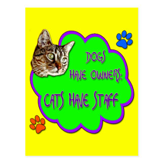 Dogs Have Owners, Cats Have Staff Postcard