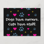 Dogs Have Owners-Cats Have Staff Postcard