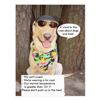 Dogs & Heat Postcards