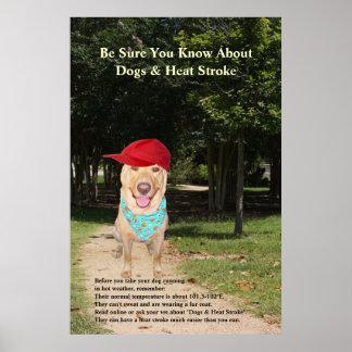 Dogs & Heat Stroke Poster