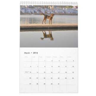 Dogs in all the world calendar
