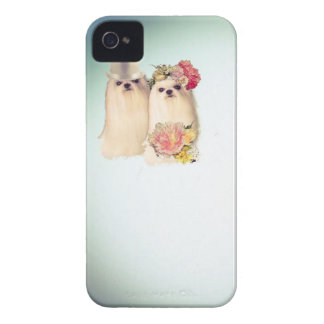 Dogs in wedding custom iPhone 4 cover