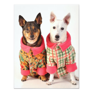 Dogs in Winter Coats Card