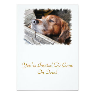DOGS PERSONALIZED INVITATION