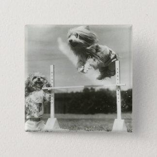 Dogs jumping over miniature high jump bar button