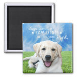 Dogs leave paw prints on your heart 2 inch square magnet