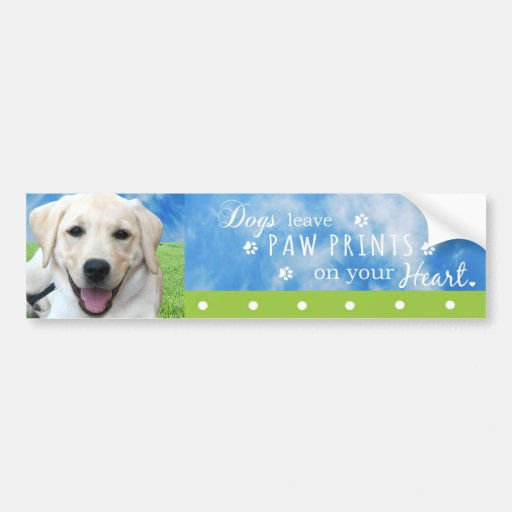 Dogs leave paw prints on your heart bumper stickers