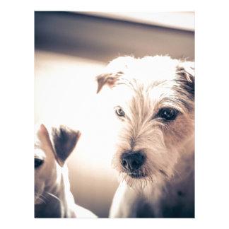 dogs letterhead