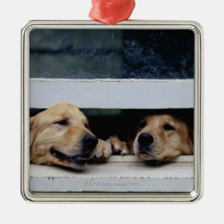 Dogs Looking Out a Window Metal Ornament