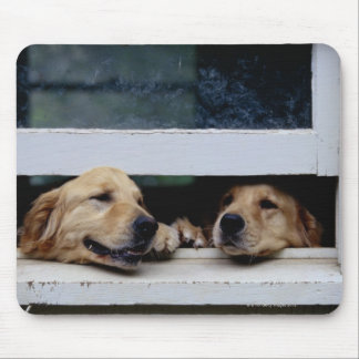 Dogs Looking Out a Window Mouse Pad