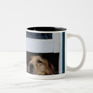 Dogs Looking Out a Window Coffee Mug