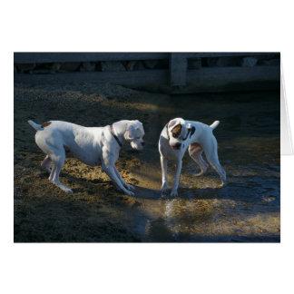 Dogs Meet Their First Wave Card