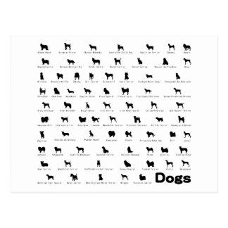 Dogs Name Postcard