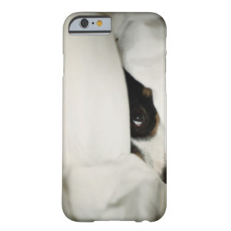 Dog's Nose Sticking Out From Bedding Barely There iPhone 6 Case