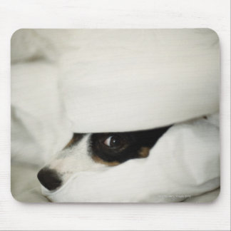 Dog's Nose Sticking Out From Bedding Mouse Pad