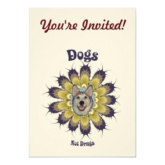 Dogs Not Drugs Card
