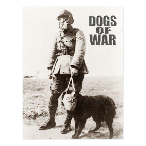 Dogs of War wearing gas mask Postcard