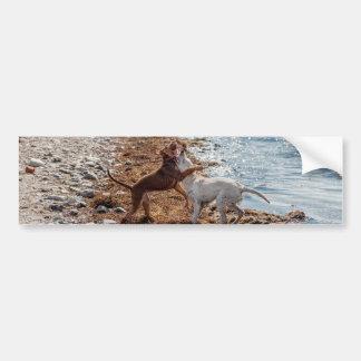 Dogs on beach bumper sticker