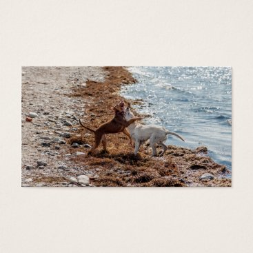 Beach Themed Dogs on beach business card