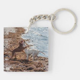 Dogs on beach keychain