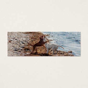 Beach Themed Dogs on beach mini business card
