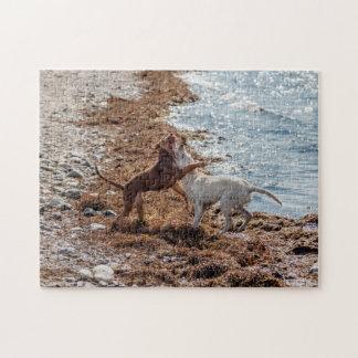 Dogs on beach jigsaw puzzles