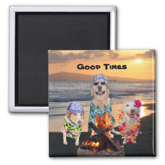 Dogs on the Beach at Sunset 2 Inch Square Magnet