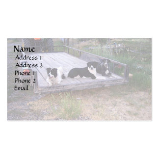 Dogs On Truck Bed Business Card