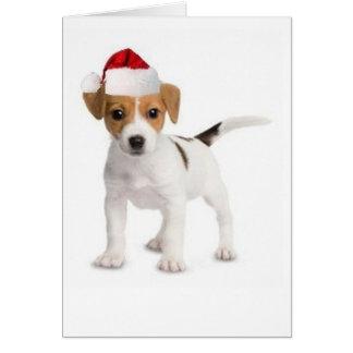 Dogs~Original Ditzy Card~Jack de saludo Russell Tarjeta De Felicitación