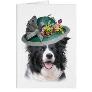 Dogs~Original Ditzy Notecard~Border Collie~Easter Tarjetas