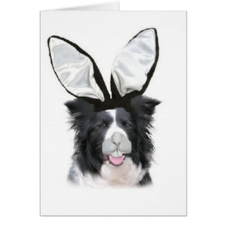 Dogs~Original Ditzy Notecards~Border Collie~Easter Tarjeton