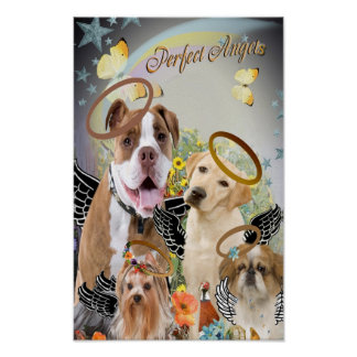 Dogs Perfect Angels Art Poster