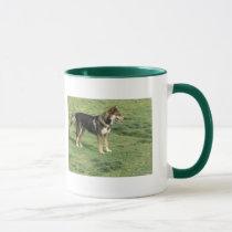 dogs, pets, animals, mugs, postage, mouse pads mug