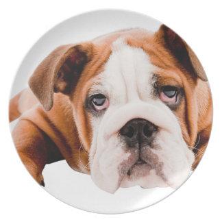 DOGS, PETS BULLDOG CUTE ADORABLE DIGITAL REALISM P PARTY PLATES