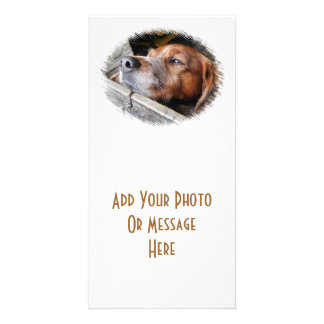 DOGS PHOTO CARD